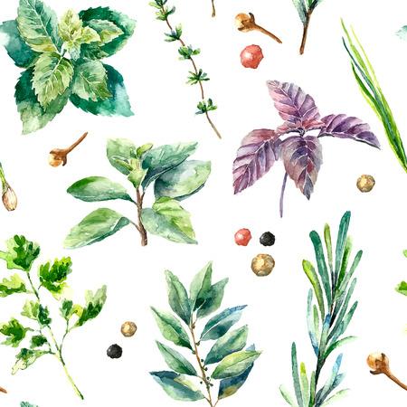 Watercolor kruiden en specerijen patroon. Naadloze textuur met de hand getekende elementen basilicum, rozemarijn, peterselie, gember, rode peper, anijs en kaneelstokjes.