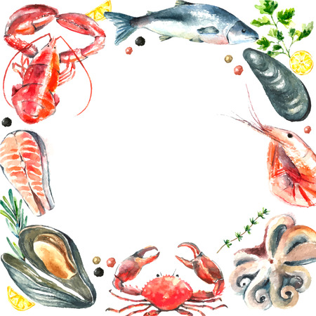 mussel: Watercolor frame of seafood.Hand draw isolated illustration on white background lobster,crab,shrimp,octopus,mussel,salmon with herbs,lemon and peppers.Fresh organic food.