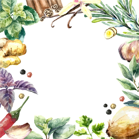 oregano: Watercolor herbs and spices frame. Round frame with hand painted food objects mint, basil, rosemary, parsley, oregano, thyme, bay leaves, green onion, ginger, pepper, vanilla.
