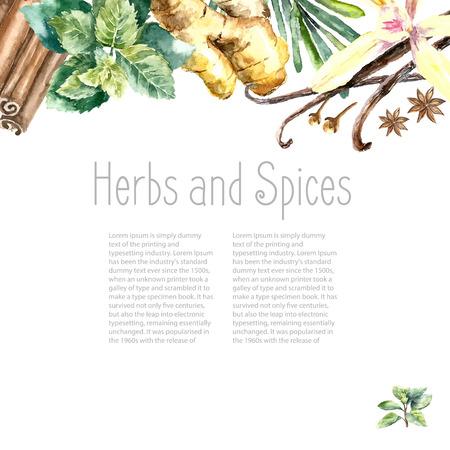 kulinarne: Akwarela zioła i przyprawy ramki. Ręcznie malowane przedmioty żywnościowe: mięta, bazylia, rozmaryn, pietruszka, oregano, tymianek, liście laurowe, zielona cebula, imbir, pieprz, wanilia. Ilustracja