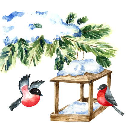 nesting box: Watercolor Bullfinch on white. Drawing of a bird with winter branch and nesting box. Christmas symbol. Vintage style.Vector