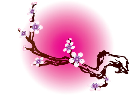 The branch of a flowering tree in the background with Japanese motifs. Stock Vector - 6578618