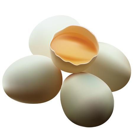 uovo rotto: Uovo rotto.