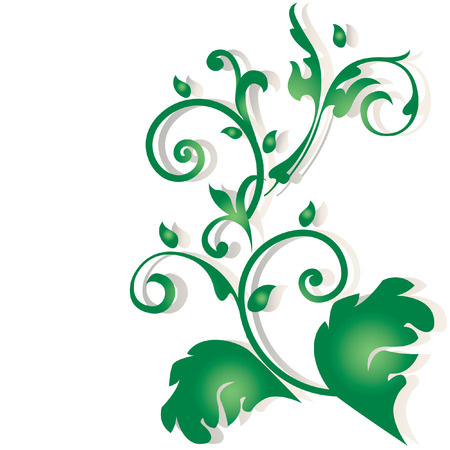 branch to grow up: Ornament. Illustration