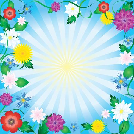 Flower frame. Vector