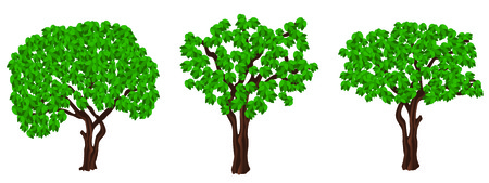 Green trees.