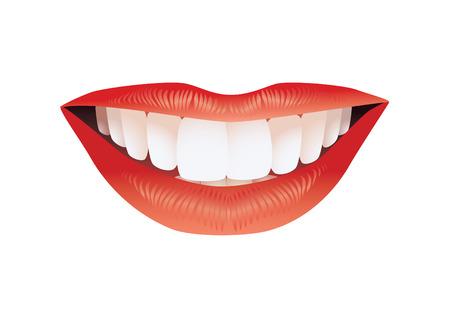 Sonrisa.  Ilustración de vector
