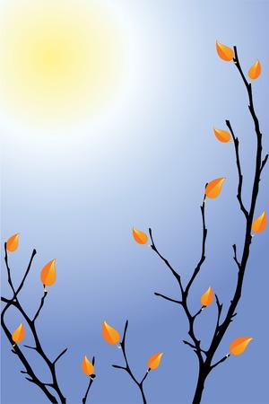 singly: Autumn background.