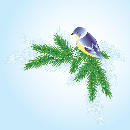 Christmas background with a branch of pine trees and a small bird. Vector