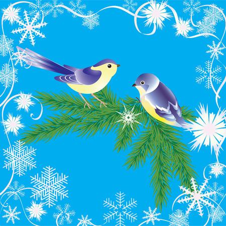 tomtit: Winter frame