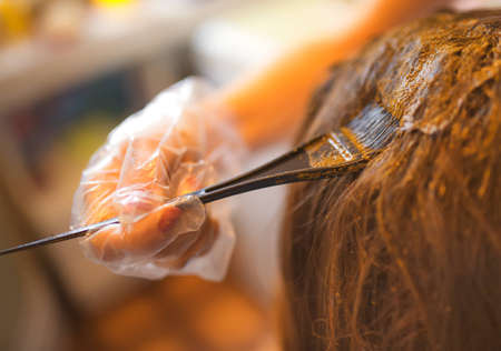hair coloring: Process of coloring hair with natural henna. Stock Photo