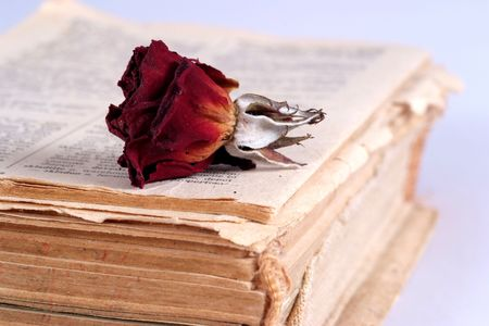 hymn: Old book and old red rose