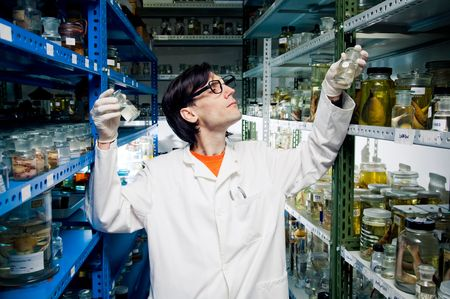 Scientist at work Stock Photo - 6546747