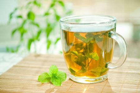 herbal tea: Mint tea with fresh mint leaves  Stock Photo