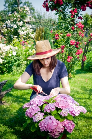 Young woman working in her garden    Stock Photo