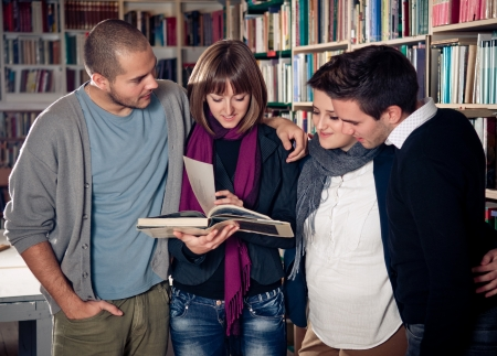 Group of students learning together Stock Photo - 16272975
