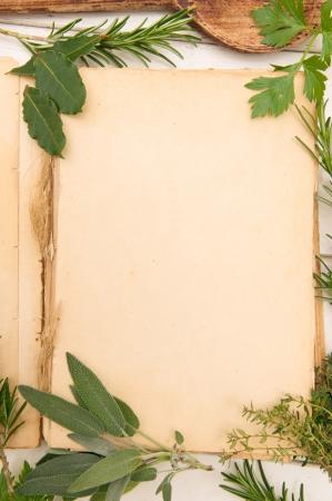 tomillo: Viejo libro en blanco con hierbas frescas