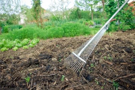 Bio-Gemüsegarten Düngung mit Kompost Standard-Bild - 19461224