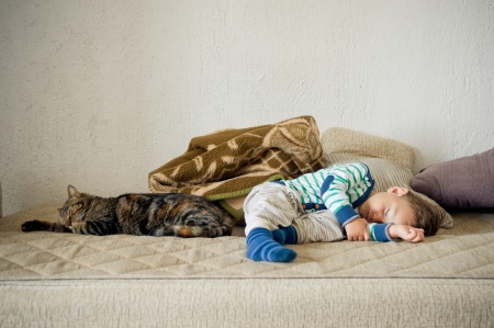 Cute baby toddler boy and cat sleeping together Stock Photo