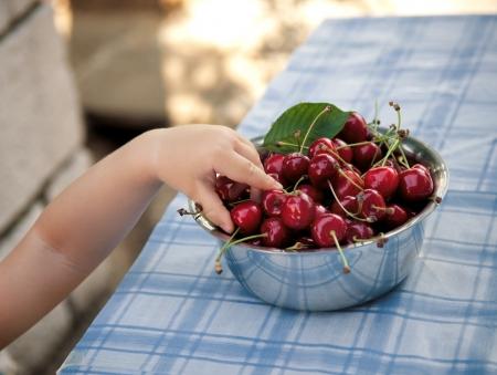 snatch: Small hand taking fresh cherries  Stock Photo