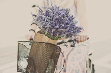 Vrouwen rijden fiets met lavendel boeket in mandje Stockfoto