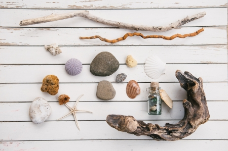 Beach finds on old white table  photo