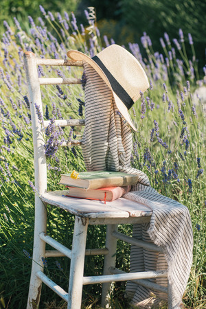 lavender bushes: Vintage chair books and hat in lavender field Stock Photo