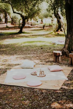 Perfecte plek voor picknick in olijfgroef