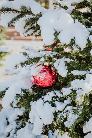 Rode Kerstmisbal op een met sneeuw bedekte boomtak