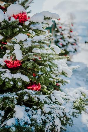 Kerstbomen met rode ballen onder sneeuw