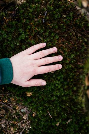 Child in nature touching green carpet Stockfoto