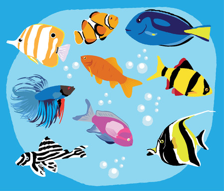 Tropical fish in water Ilustrace