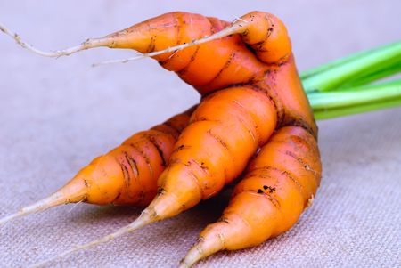 bunches: Carrot bunches