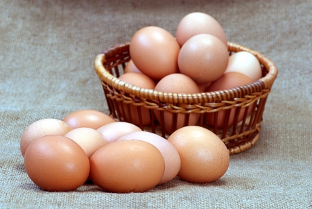 new-laid eggs Chicken eggs of brown color in cardboard cells photo