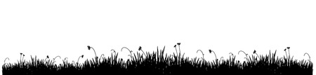 Black silhouette of a meadow grass on a white background