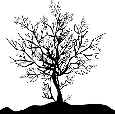 Black silhouette of a tree without foliage on a white background
