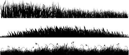 three variants of black silhouette of a meadow grass on a white background