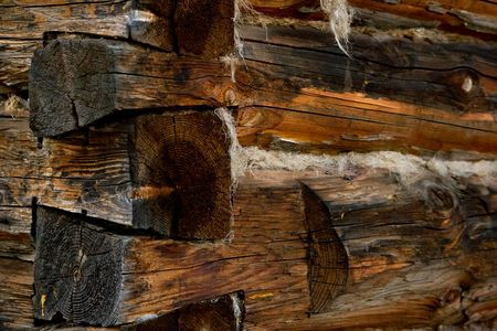 nonuniform: Highly detailed texture of a wooden surface. Wall of the old house