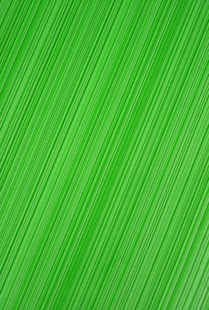 nonuniform: The green striped texture. Abstract background
