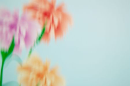 blurring: Bouquet from three carnations of pink and beige color. Blurring.