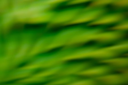 blurring: Green abstract background. Blurring photo