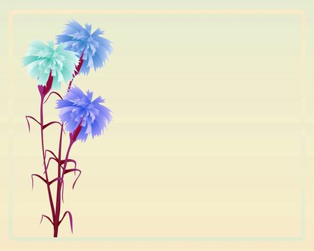 carnations: Bouquet from three blue carnations on yellow background with a framework