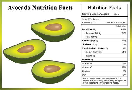 Avocado Nutrition Facts Illusztráció