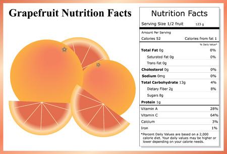 グレープ フルーツの栄養成分  イラスト・ベクター素材