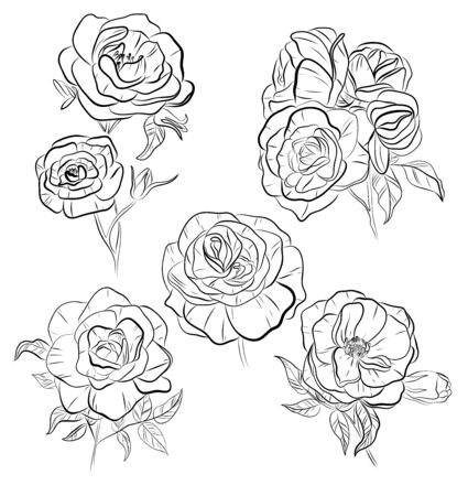 Set of vector isolated rose flowers. Black and white outline hand drawn rose flowers. Beautiful floral design elements. Tattoo sketch. Vectores