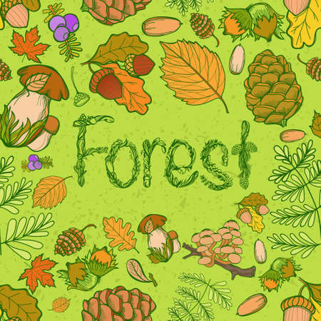 acorn seed: Seamless color wild elements of nature Illustration