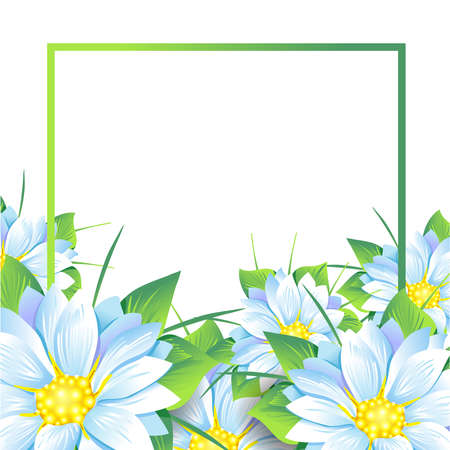 Summer bouquet of flowers daisies and asters on white background. Summer, spring concept Design.Isolate on white.Vector illustration