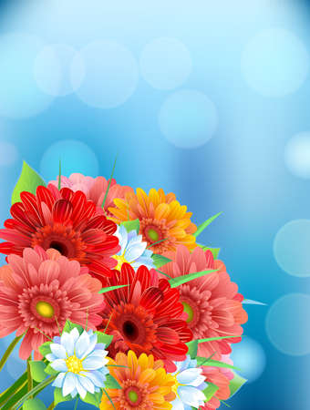 aster: Bouquet of flowers gerbera, aster, daisy on blur background with the effect of light. Summer, springs time background, isolate.Vector illustration