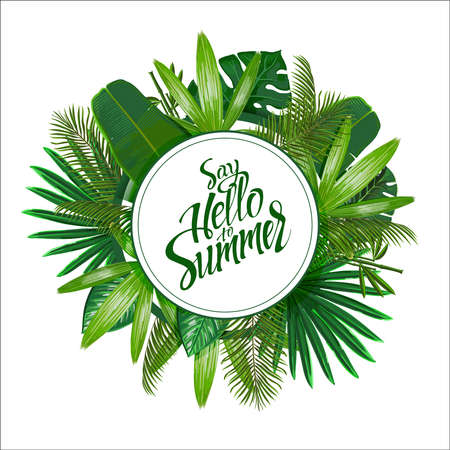 Tropical leaves around the circle on white background with isolated sign Say hello to Summer. Pattern nature. 일러스트