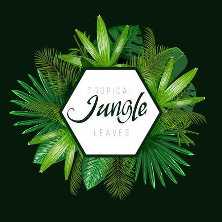 Tropical leaves around the shape on dark background. Designs nature. Vector art isolate. Ilustração